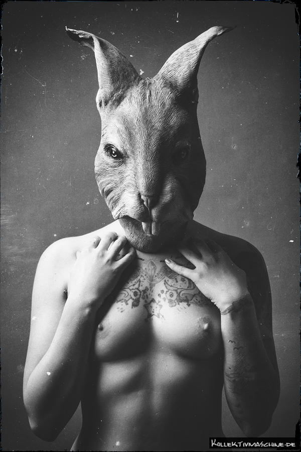 50 shades of rabbit by Kollektivmaschine