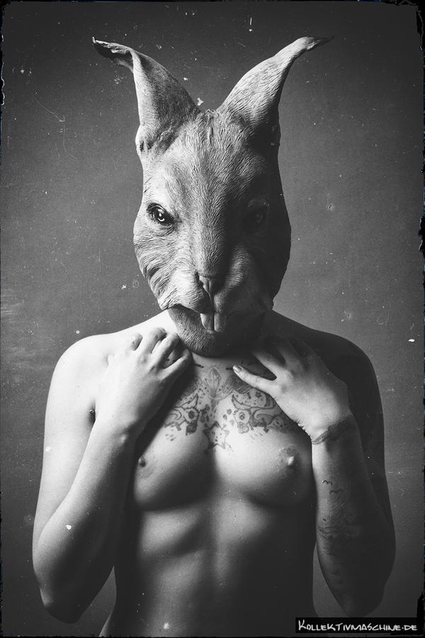 50 shades of rabbit by Kollektivmaschine