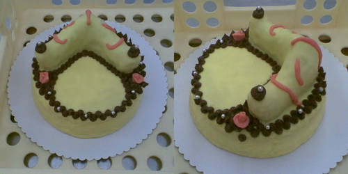 my exhibition cake by Drayo