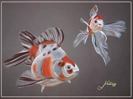 Fishes by Malina-art