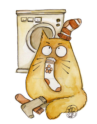 Sock mystery by Maria-van-Bruggen