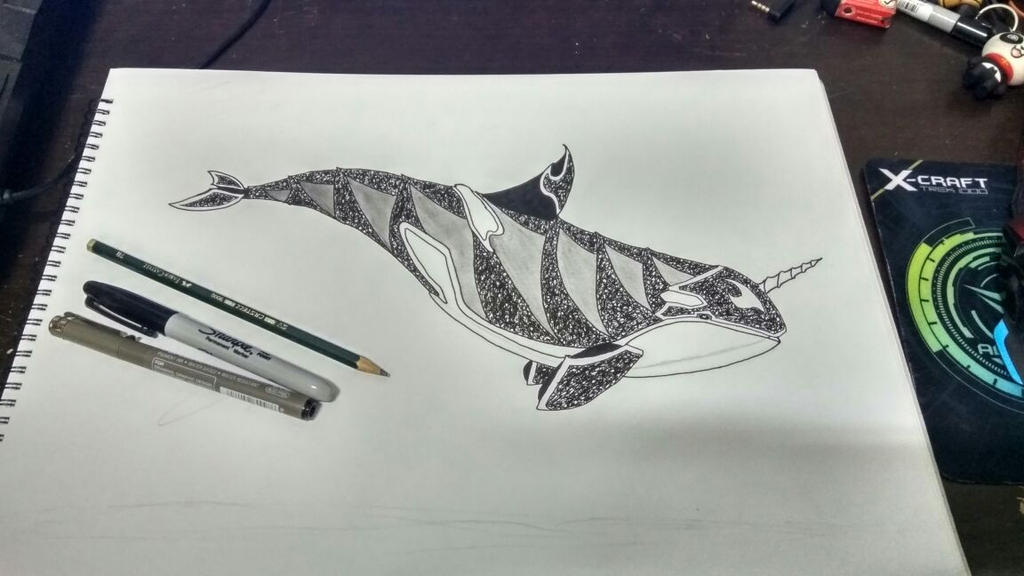 Orca doodles by MintzMagius