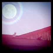 Two Cats, One Roof by Menchieee