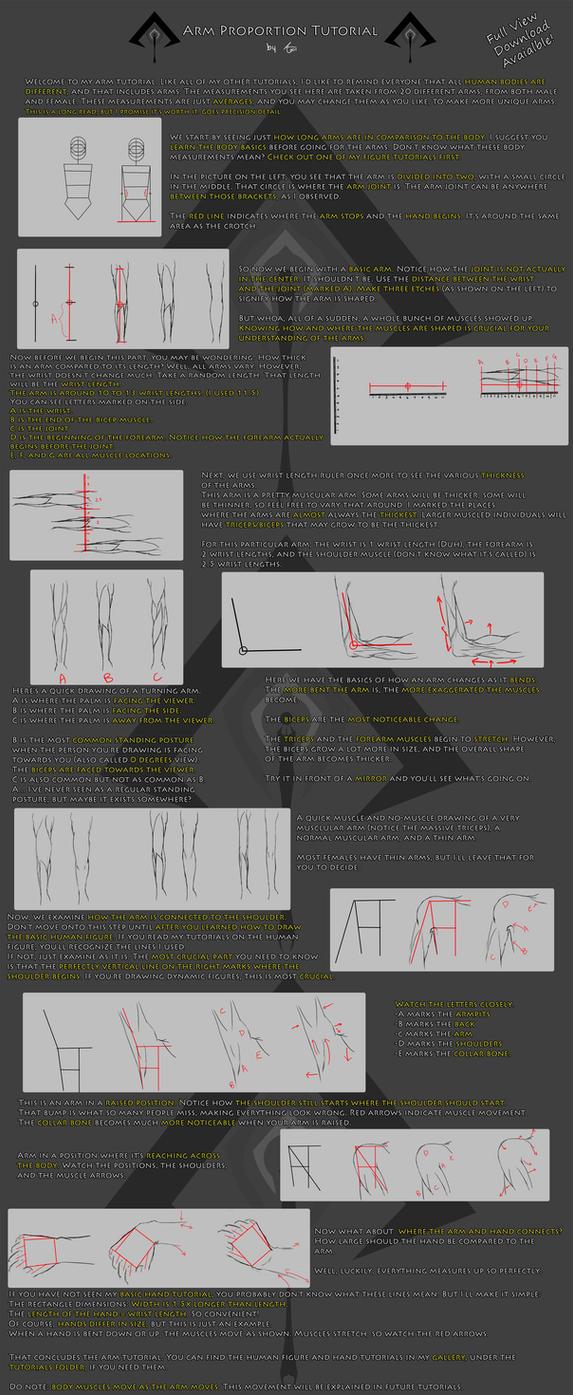 Arm Anatomy Tutorial by Jeff-H