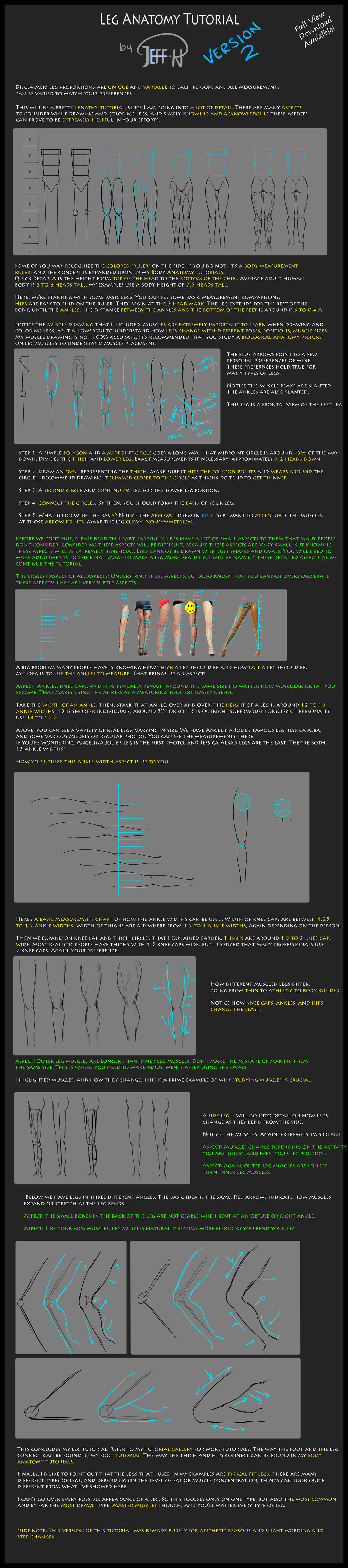 Leg Anatomy Tutorial (Version 2) by Jeff-H