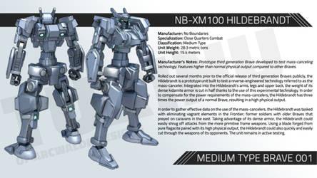 NB-XM100 HILDEBRANDT