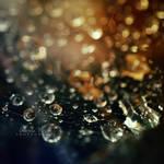 drops by leelloor