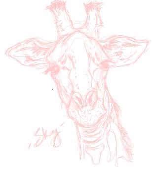 Giraffe sketch by Sky202