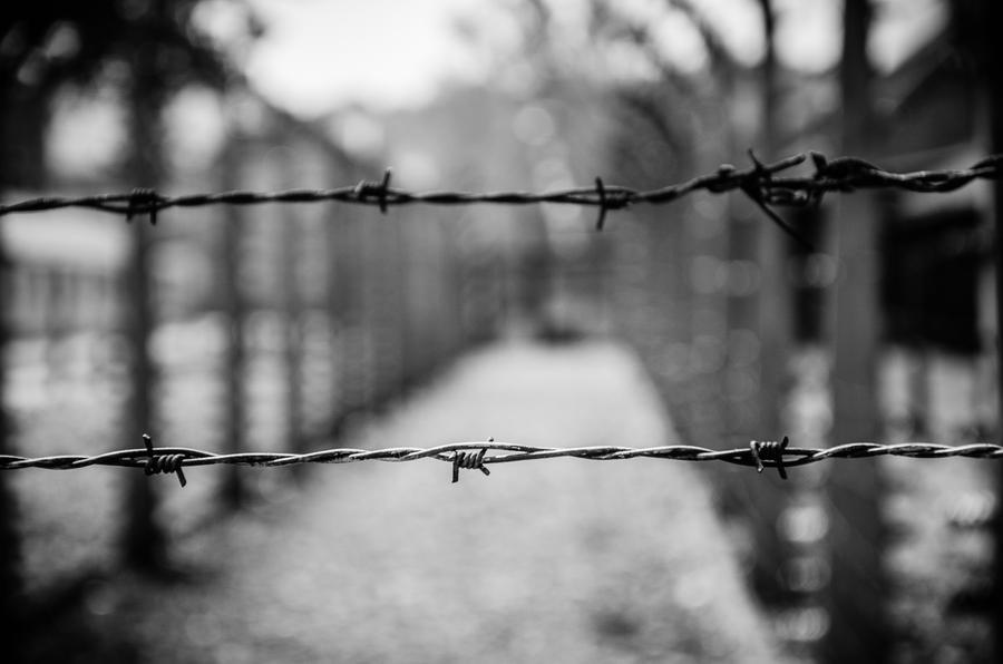 Auschwitz-Birkenau 28 by aledeviantartist