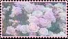 Pink Roses Stamp by PrismsFairies