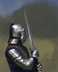 medieval armor practice#1