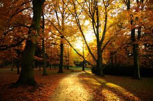 Autumn by xLostFACEx