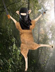 Ninja Sheep by daylover1313