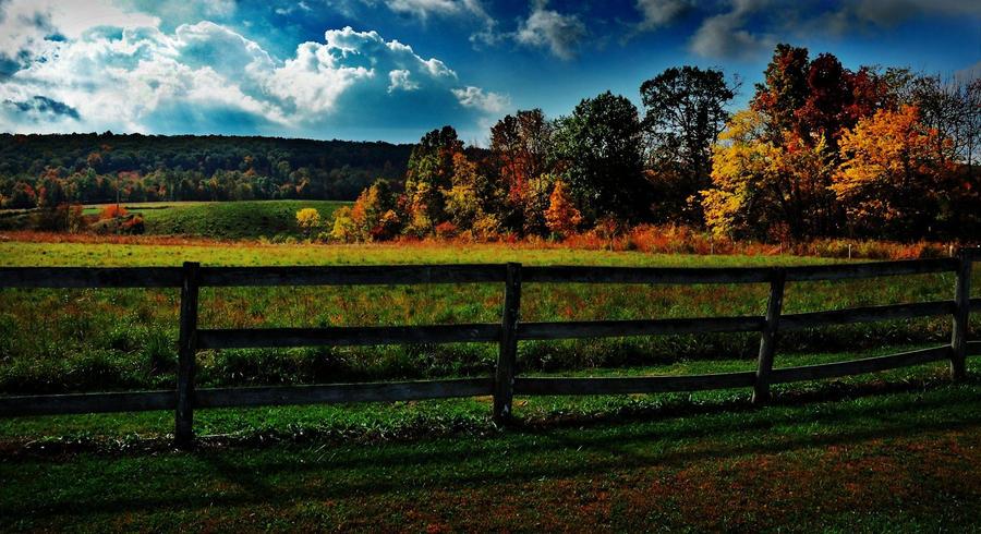 Fall 2 by r-oa-r