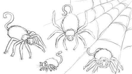 Spider Kitty - Character Design