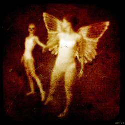 losing the angel
