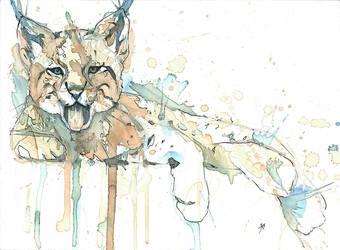 Lynx by alarie-tano