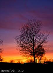Sunset pt 3 by MissCole
