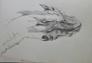 Smaug: Sketch in Progress