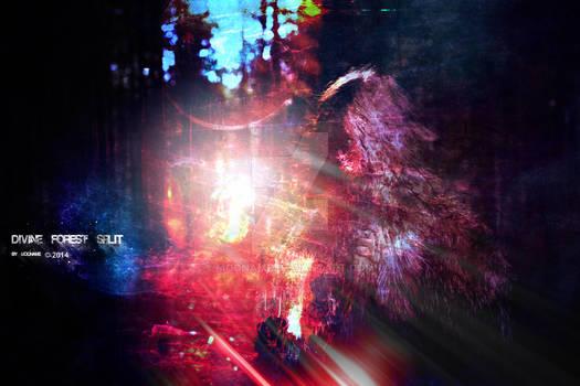 divine forest split