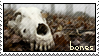 bones stamp by gyenes