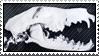 skull stamp by gyenes