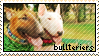 bullterriers stamp by gyenes