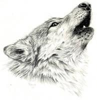 Howling Wolf by Jiinx-Magic