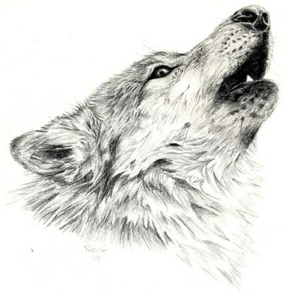 Howling Wolf by Jiinx-Magic on DeviantArt