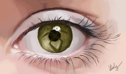 Shadowhunter eye by Lisly227
