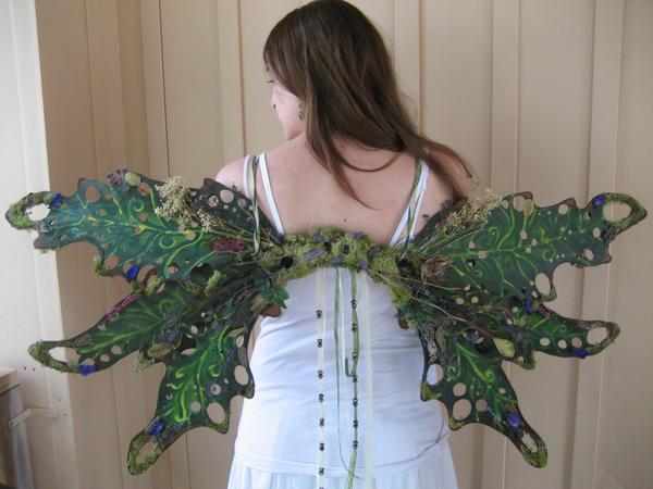 Woodland Faerie Wings by Akirren