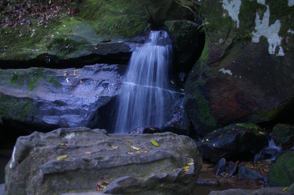 Katoomba Falls by Shenhua