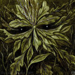 Face of Leaves