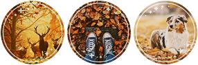 Condica de prezenta - Page 27 F2u_autumn_divider_by_starstruckdoodle_dbptmal-fullview.png?token=eyJ0eXAiOiJKV1QiLCJhbGciOiJIUzI1NiJ9.eyJzdWIiOiJ1cm46YXBwOjdlMGQxODg5ODIyNjQzNzNhNWYwZDQxNWVhMGQyNmUwIiwiaXNzIjoidXJuOmFwcDo3ZTBkMTg4OTgyMjY0MzczYTVmMGQ0MTVlYTBkMjZlMCIsIm9iaiI6W1t7ImhlaWdodCI6Ijw9OTQiLCJwYXRoIjoiXC9mXC9jMTliZTJmNi00ZTU1LTQ4M2EtOGVjNC1mNTMxNTgyY2RlMmRcL2RicHRtYWwtOWU3NGViNmEtNjJmMC00MGQwLTliYjEtMzYzZDEzMjNiZWQ3LnBuZyIsIndpZHRoIjoiPD0yODYifV1dLCJhdWQiOlsidXJuOnNlcnZpY2U6aW1hZ2Uub3BlcmF0aW9ucyJdfQ