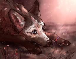 PA .: Sleep_Wolfen version by WoIfieART