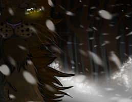 Old Warrior. ::Contest Entry:: by SparrowsNskittlez