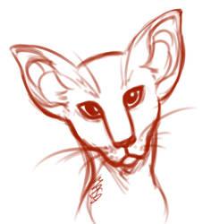 Oriental Shorthair doodle