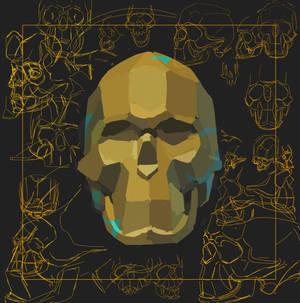 Skull Scuplture Study