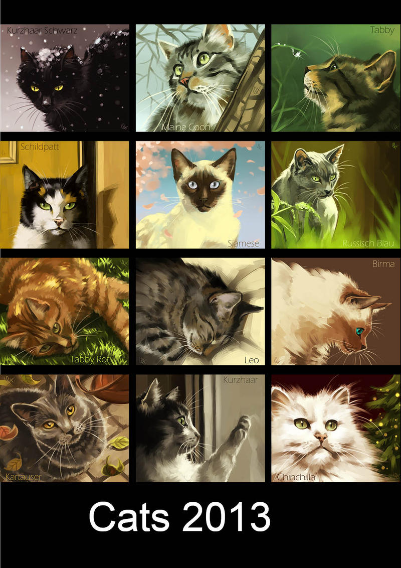 Calendar Cats by Canvascope