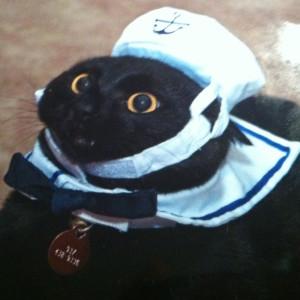 Katcam007's Profile Picture