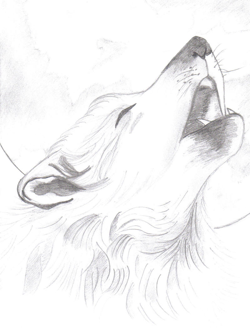 Wolf In Moon Jpg 800x1047 Wolf And Moon Drawings