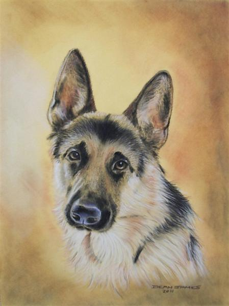 German shepherd by dixiedean on deviantart