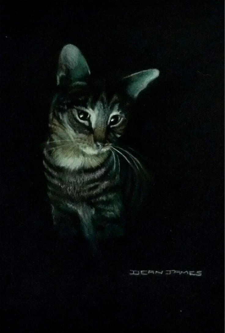 Vic's cat,...Agnes Katnip Everkeen by DIXIEDEAN