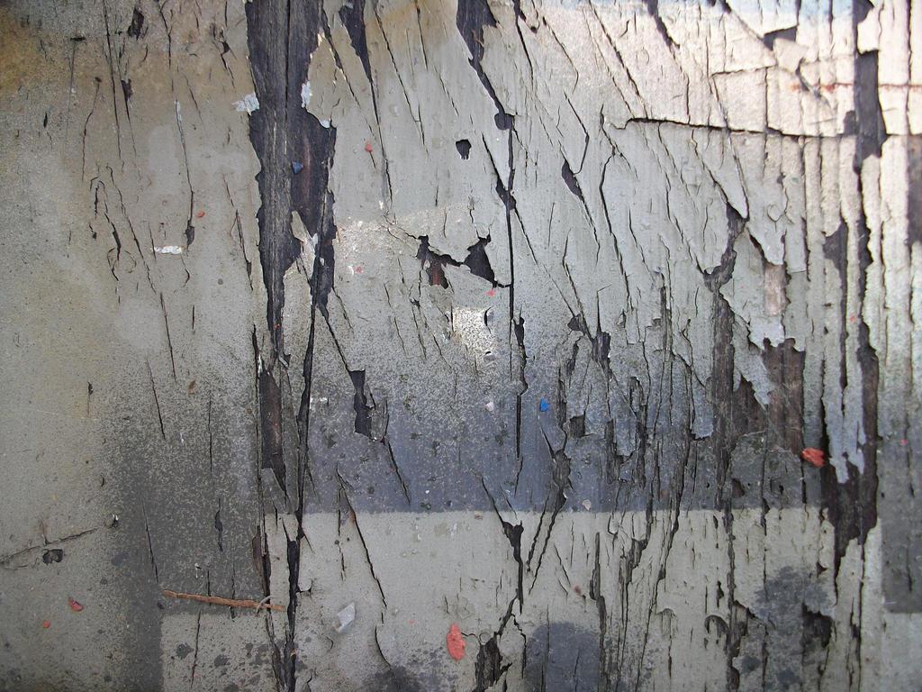 Texture 002 by RazorbackMoth-Stock