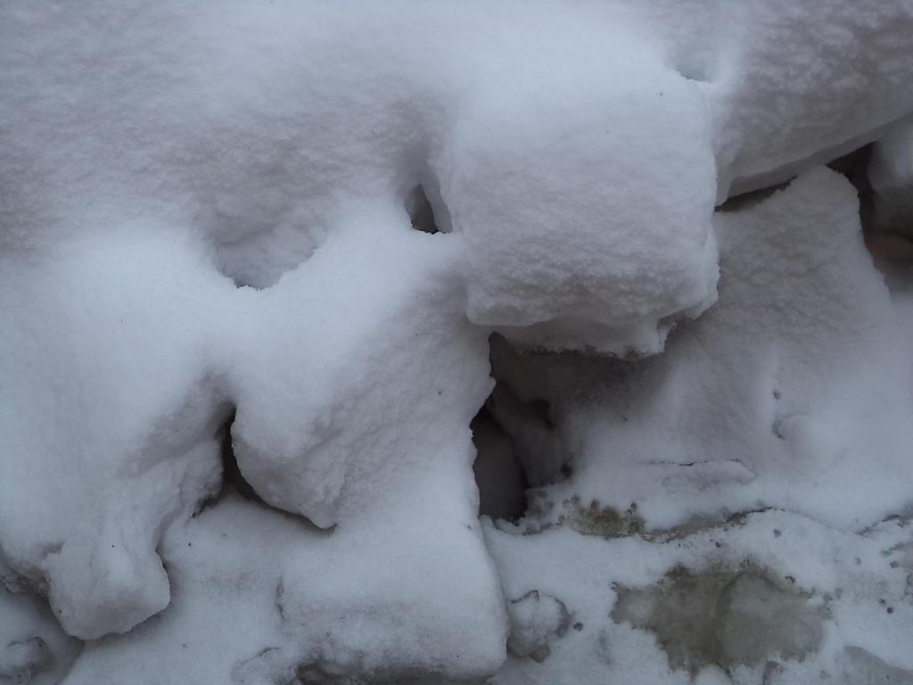Snow and Ice 2 by RazorbackMoth-Stock