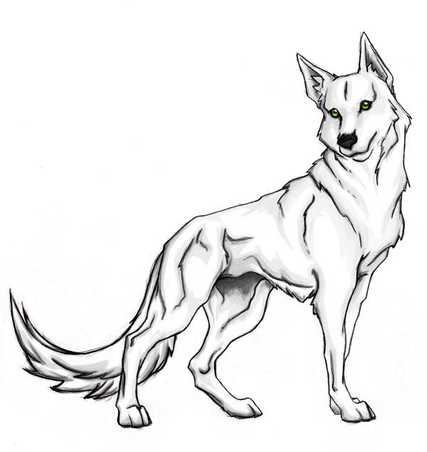 White wolf by xxraithexx on deviantart for Howling wolf coloring pages