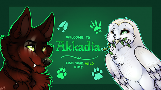 Wolf vs Owl Akkadia3_by_bloodiath-dcajkj2