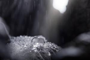 Crystal Drop Water by MohannadKassab