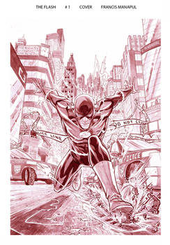 Flash 1 Cover