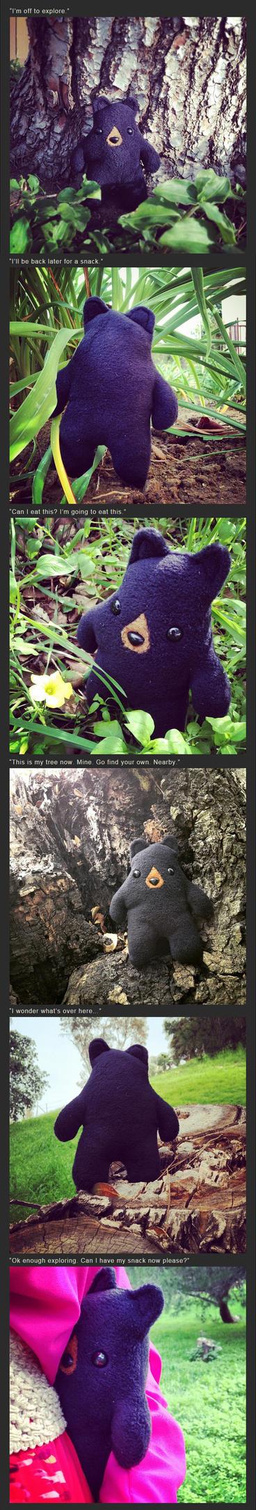 Bold Black Bear's Adventure by csgirl